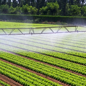 irrigation_dreamstime_xxl_21145428
