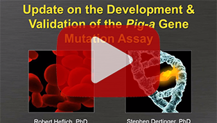HESI Webinar: Update on the Development & Validation of the Pig-a Gene Mutation Assay