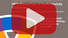 April 17, 2015: Biomarkers of Nephrotoxicity Committee