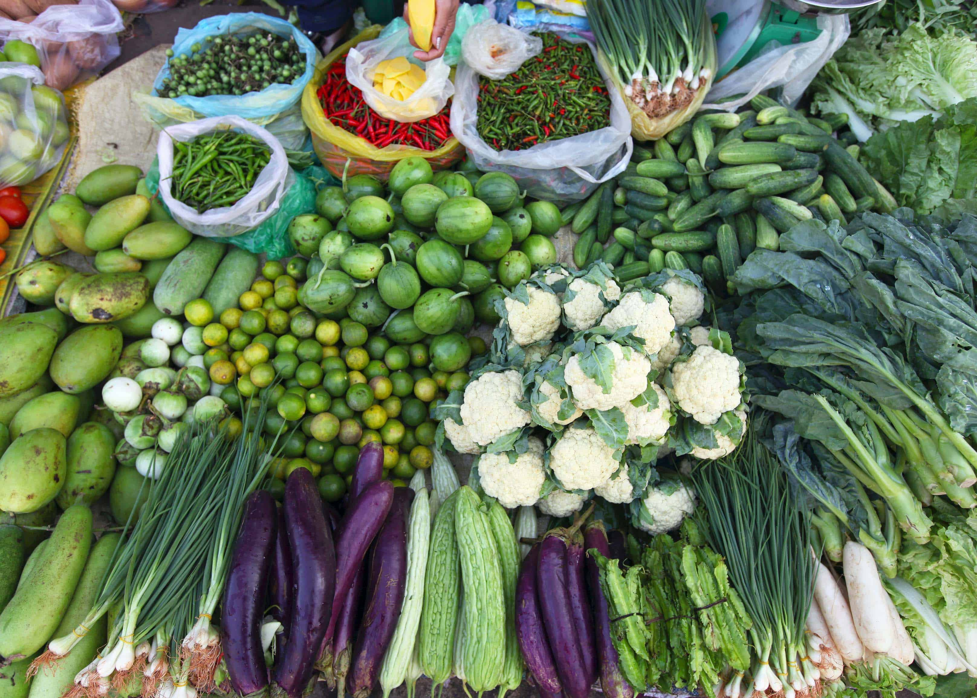 asian_vegetables_dreamstime_xl_26717917