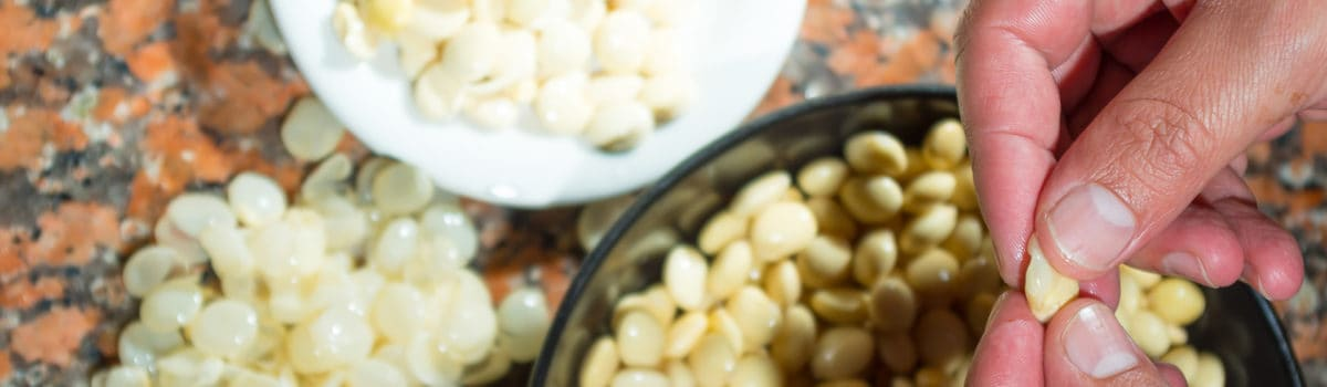 Estudio Latinoamericano de Nutrición y Salud (ELANS)