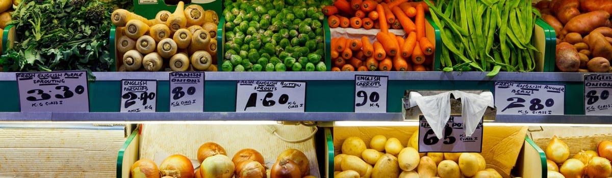 One ILSI: Global Nutrition Strategy